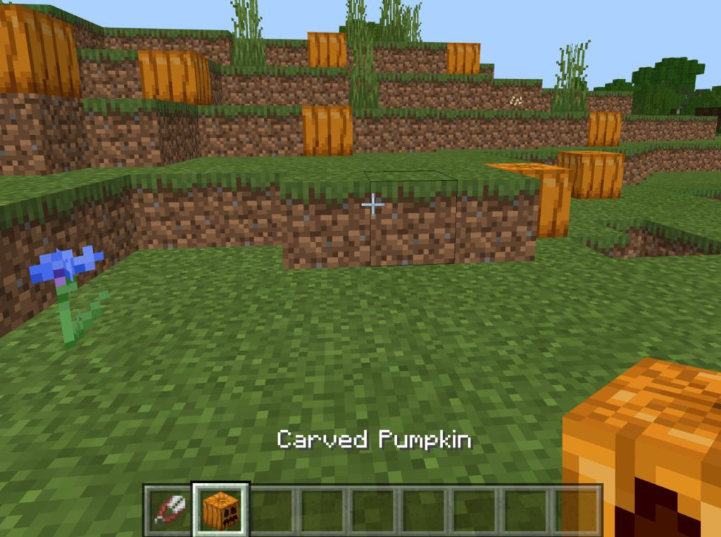 how-to-carve-a-pumpkin-in-minecraft-step6